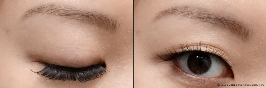 SocialEyes - Let Your Eyes Do The Talking. SocialEyes Lush Lashes Review for Monolids
