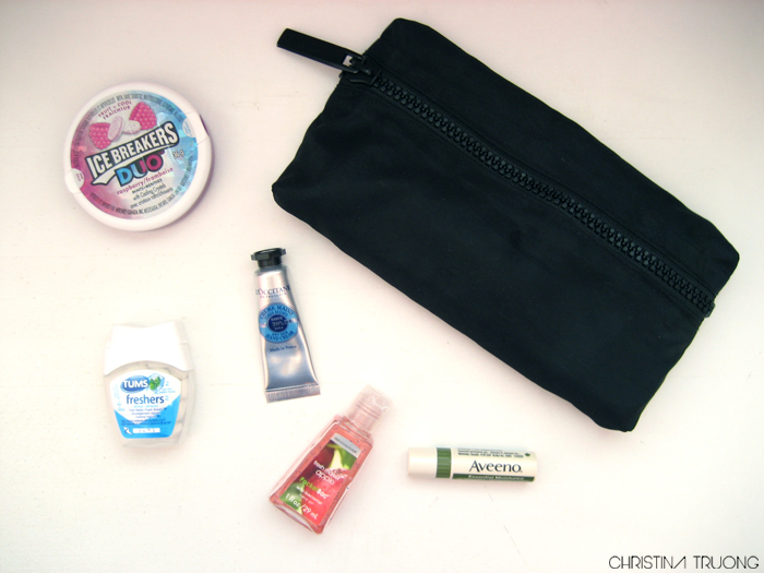 What's In My Bag - Ice Breakers DUO Raspberry. Holt Renfrew nylon makeup pouch. Tums freshers. L'Occitane Shea Butter Mini Hand Cream. Bath & Body Works Fresh Market Apple anti-bacterial hand gel. Aveeno Essential Moisture Lip Condition with SPF 15.