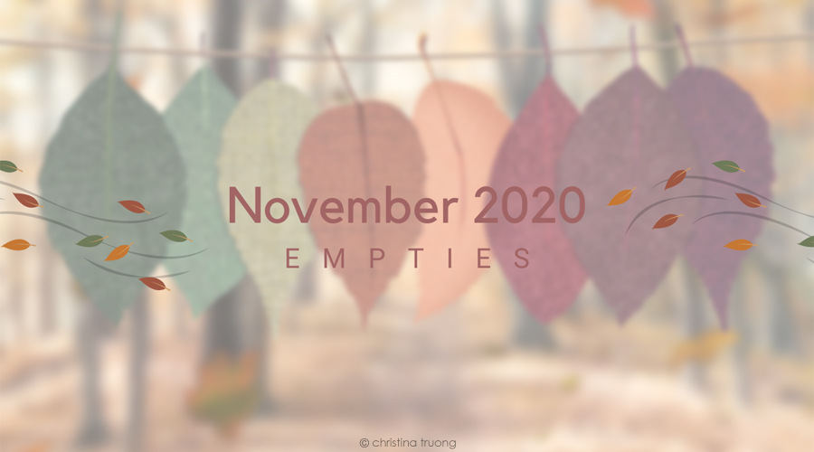 November 2020 Empties Makeup Hair and Skin Care Products